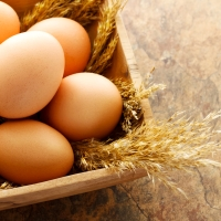 6 Healthy Ways to Cook Eggs